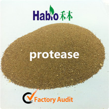 Habio Protease Enzyme for Feeding/Textile/Detergent/Alcohol Brewing/Flour Processing