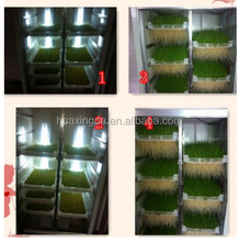 automatidc hydroponic seeds sprout fodder growing machine