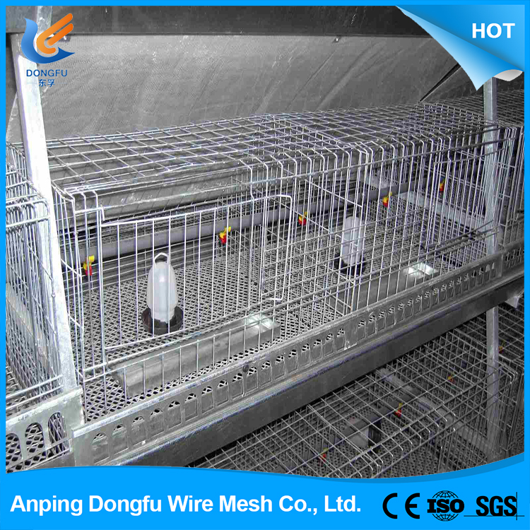 design layer chicken cages for kenya poultry farm , design layer chicken cage poultry farm