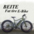 USA style Fat Tyre Electric Bike with Rear Motor