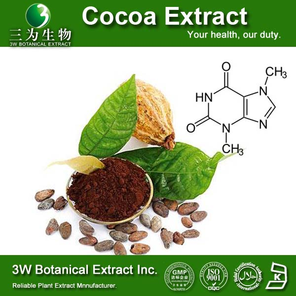 Food&Medical Grade Cocoa Seed Extract Powder Cocoa Seed P.E. Cocoa Powder Manufacturer
