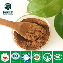 Green Tea Extract Polyphenols Softgel capsule with good quality and low price