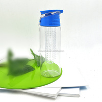 LFGB Passed Promotional Gift Modern Portable Glass Cheap Bike Tea Infuser Water Bottle
