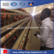 Commercial quail layer cages pvc coating wire mesh quail layer cages for big farm