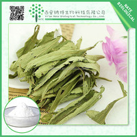 Natural sweetener stevia plant extract rebaudiana Extract Rebaudioside A Stevioside 95%