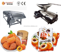 Dried apricot processing line apricot fruit processing plant