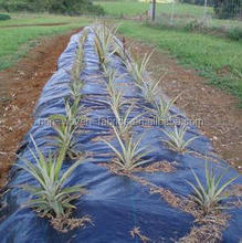 Geotextile type plastic ground cover of woven and non woven synthetic fabric