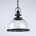 European Modern Industrial Style Vintage Ceiling Lamp Clear Glass Pendant Light