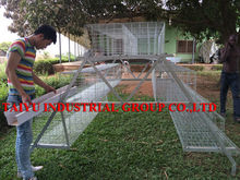 Chicken Cage Pictures On Farm ! Battery Cage For Birds
