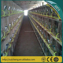 China manufacturer of 3 or 4 layer rabbit cage and new design rabbit cage