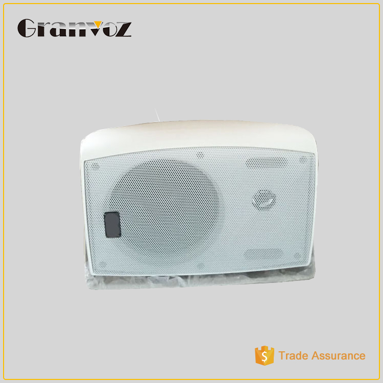 Best Quality Durable High-End Hanging Sound Box