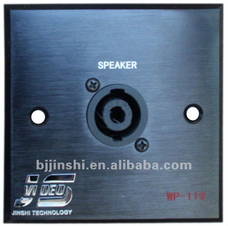 wall socket panel with speaker