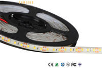 Whole sales 5000k 5050 smd led strip light