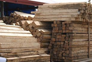 gmelina and mahogany timbre logs