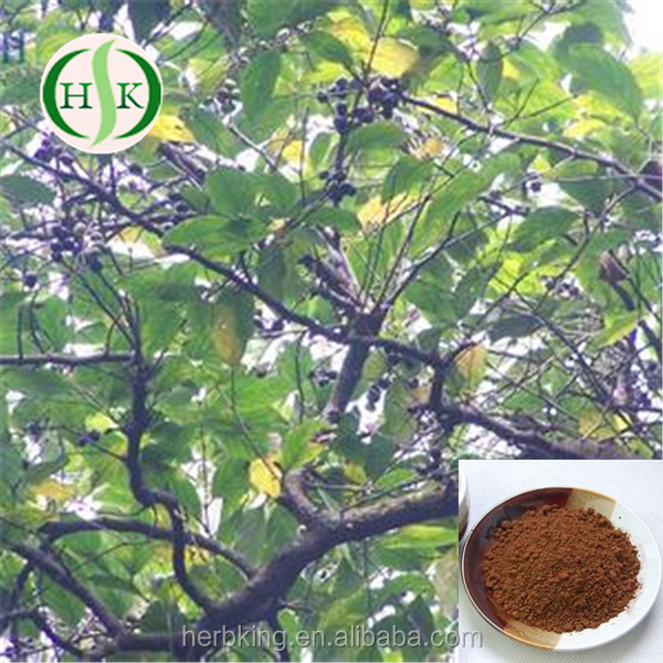 Natural Beta Sitosterol Professional Supplier For Pygeum Africanum Extract