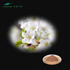 100% Natural Jasmine Extract Powder