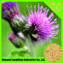 Supply Natural Milk thistle extract