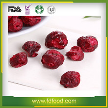 Wholesale Dried Style and Bulk Packaging Freeze Dried Sour Cherry