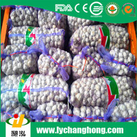 2016 new crop different size high quality fresh garlic