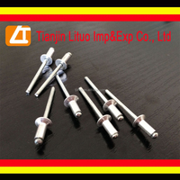 countersunk head rivet/countersunk pop rivet cheap price