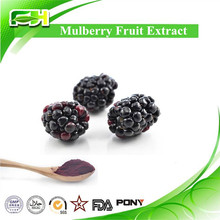 Pure Natural Mulberries P.E., Mulberries Powder, Mulberries Extract