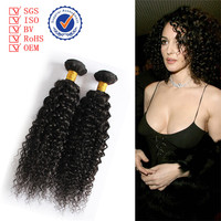 Wholesale Raw Virgin Brazilian Hair Extension Jerry Curly Wave Afro Twist Noble Gold Hair