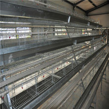 Battery chicken cage best selling in Nigeria made in Henan