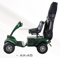 Cool go green cheap price best sale golf carts
