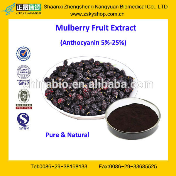 GMP Factory Supply High Quality Mulberry Extract