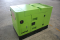 China Yangdong Engine 10kva Portable Diesel Generator