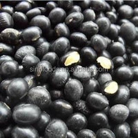 small black kidney yellow kernel beans black matpe