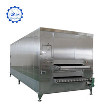 Chop pork chop production line drink iqf tunnel frozen vegetable chili blanching machine small ice cream freezer