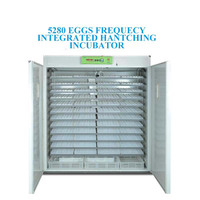 CE Approved 5000 Integrated Poultry Hatchery Machine/Egg Incubator with Promotional Price