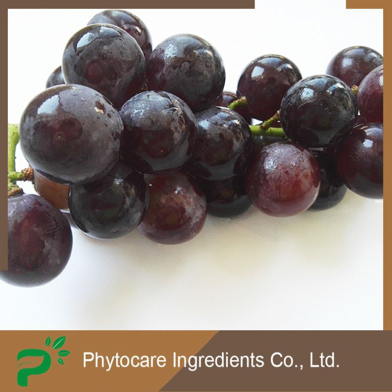 Advanced 100% pure anti-bacterial grape seed extract blood sugar
