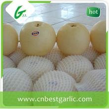 20 years experience high quality fresh delicious cheap golden pear