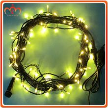 Charming mini led lights for crafts string of party lights