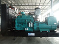 High quality cow bungs biogas generator from factory