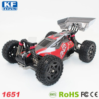 Remo Hobby 1651 high speed 2.4G Electric 4WD Brush RC Buggy drift car toys