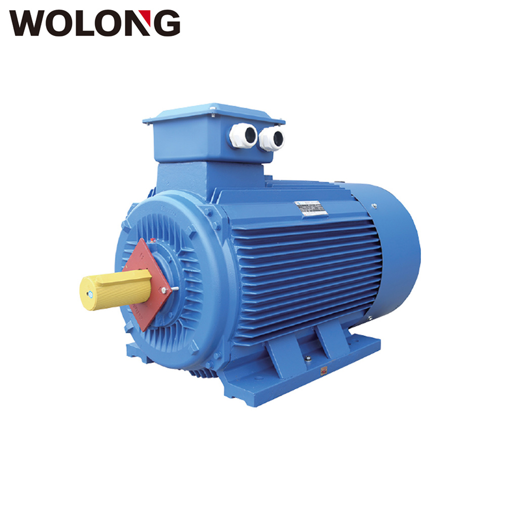 WOLONG YE3 110KW 150HP 3 phase asynchronous Induction AC motor 2-10P electric water pump motor
