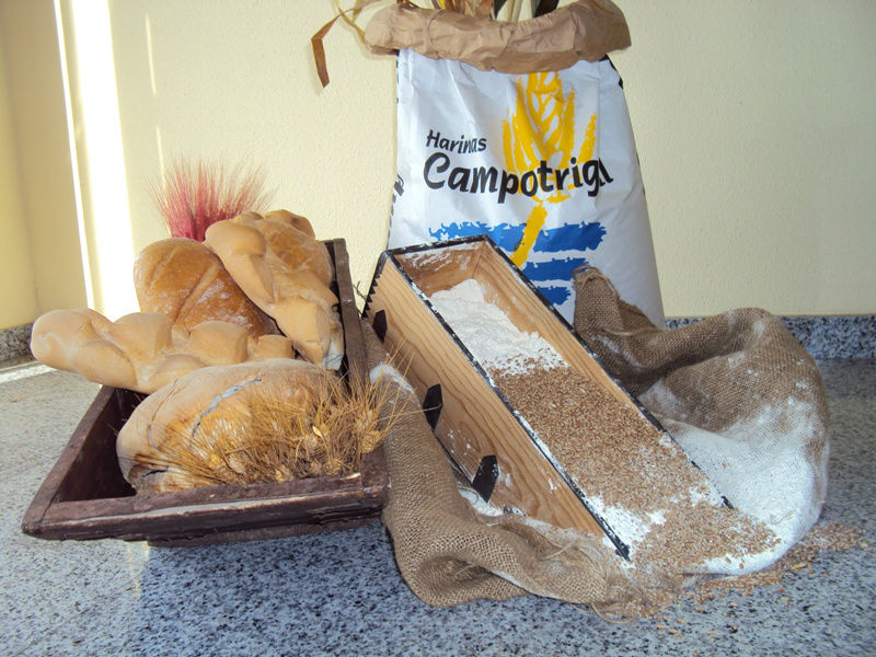 Campotrigal: Wheat Flour types T45, T55, T65, T75, T88, T110, T150