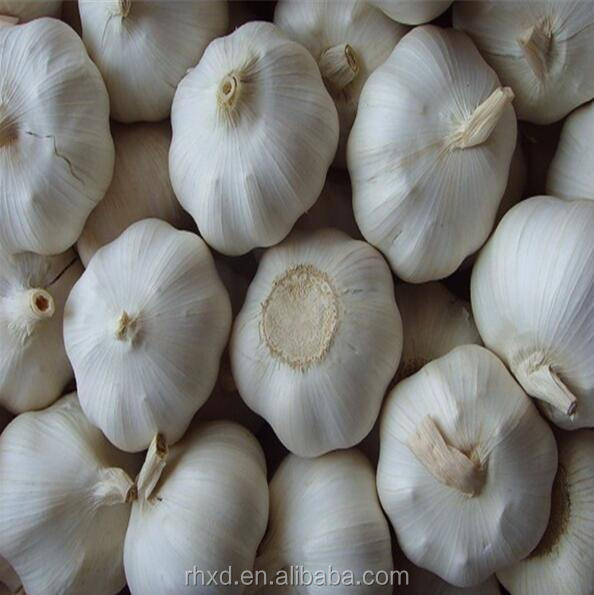 Chinese new 5cm size Best Quality White Garlic/natural garlic