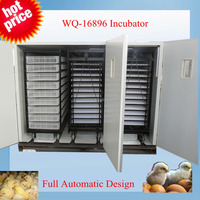 high hatching rate WQ-16896 poultry price incubator 5000 eggs chicken in kenya