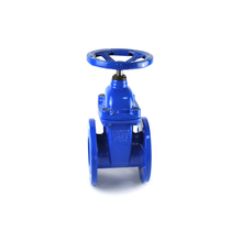 factory directly sale standard soft seated cast iron os y gate valve pn16