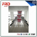 FRD-High Quality poultry Egg Layer Chicken Cage for sale