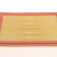 Custom Automobile Motorcycle Air Filter For