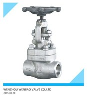 WB-101 Forged stainless steel female thread gate valve Z61H 1 inch