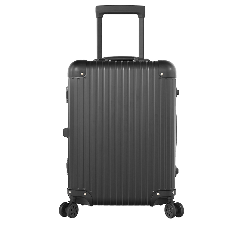 Newest Professional Makeup Trolley Case