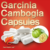 natural weight loss food supplement garcinia cambogia extract capsule