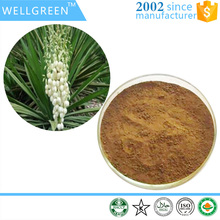 Natural plant raw materials powder Yucca Root Extract 30% saponins