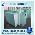 6kv 1000kva Three-phase Full-sealed Oil Immersed Power Distribution Transformer with OLTC